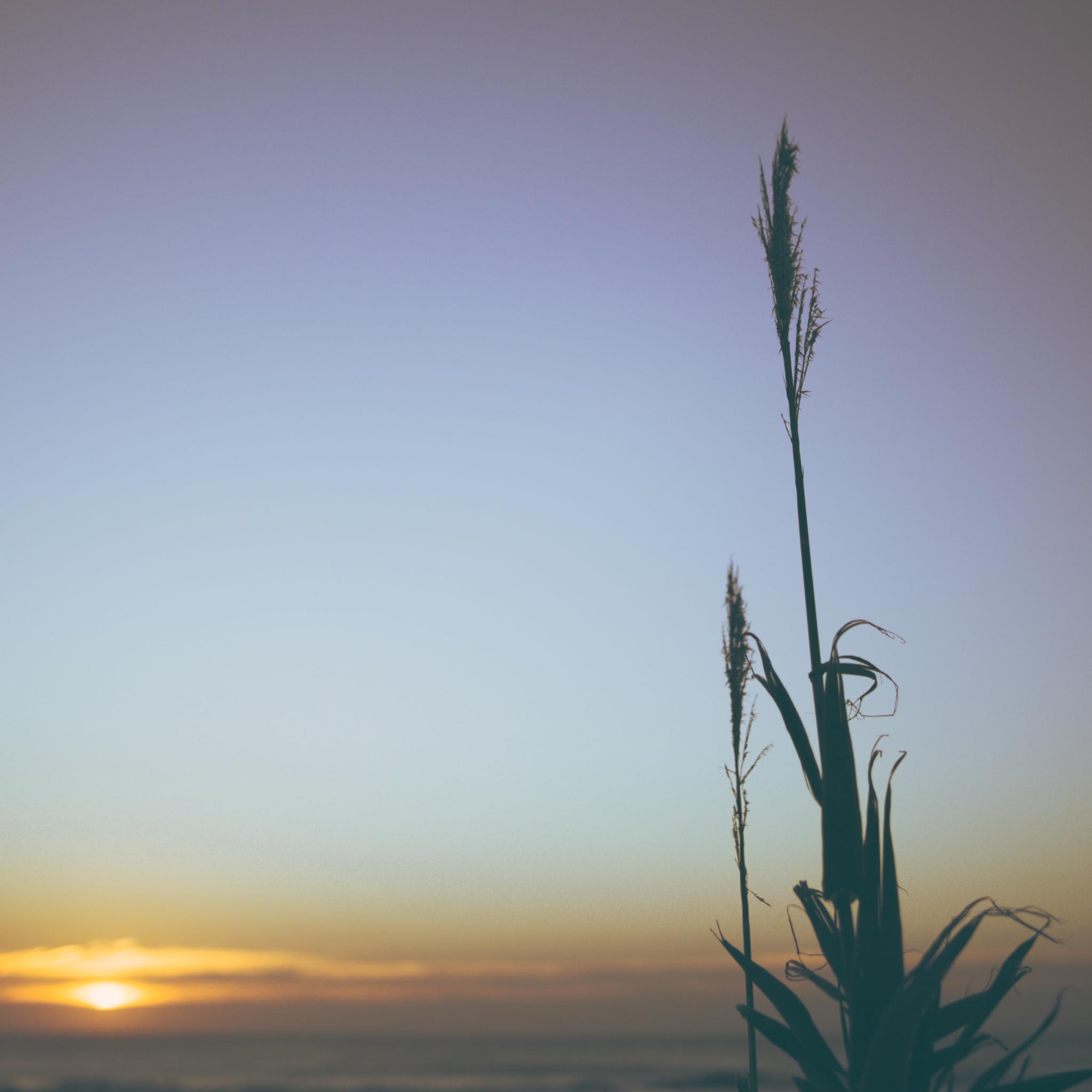 el-palmar-playa-cartero-7909
