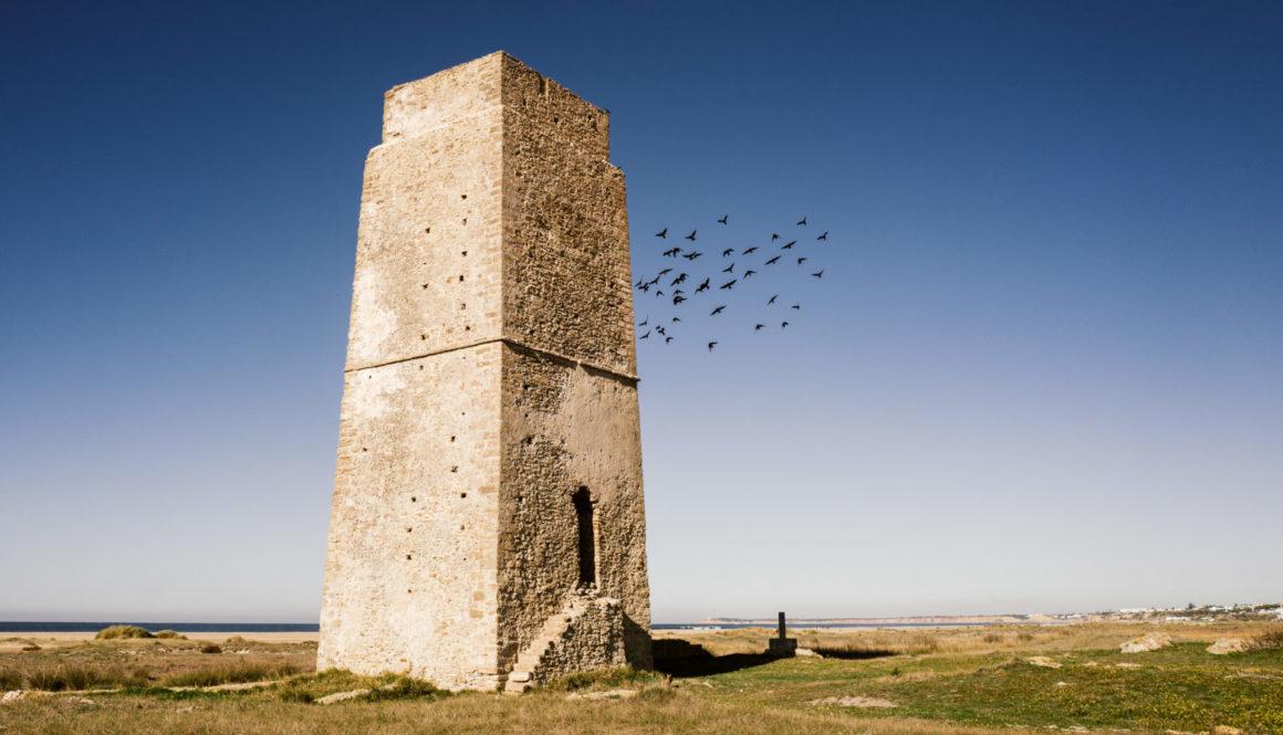 Torre-1110487